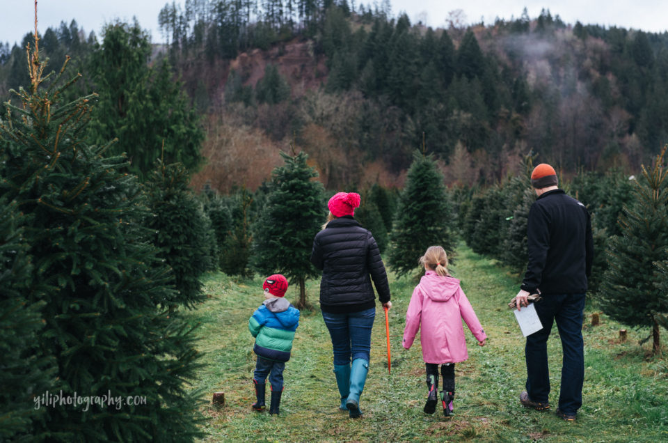 Deck the halls session {Seattle documentary family photographer}