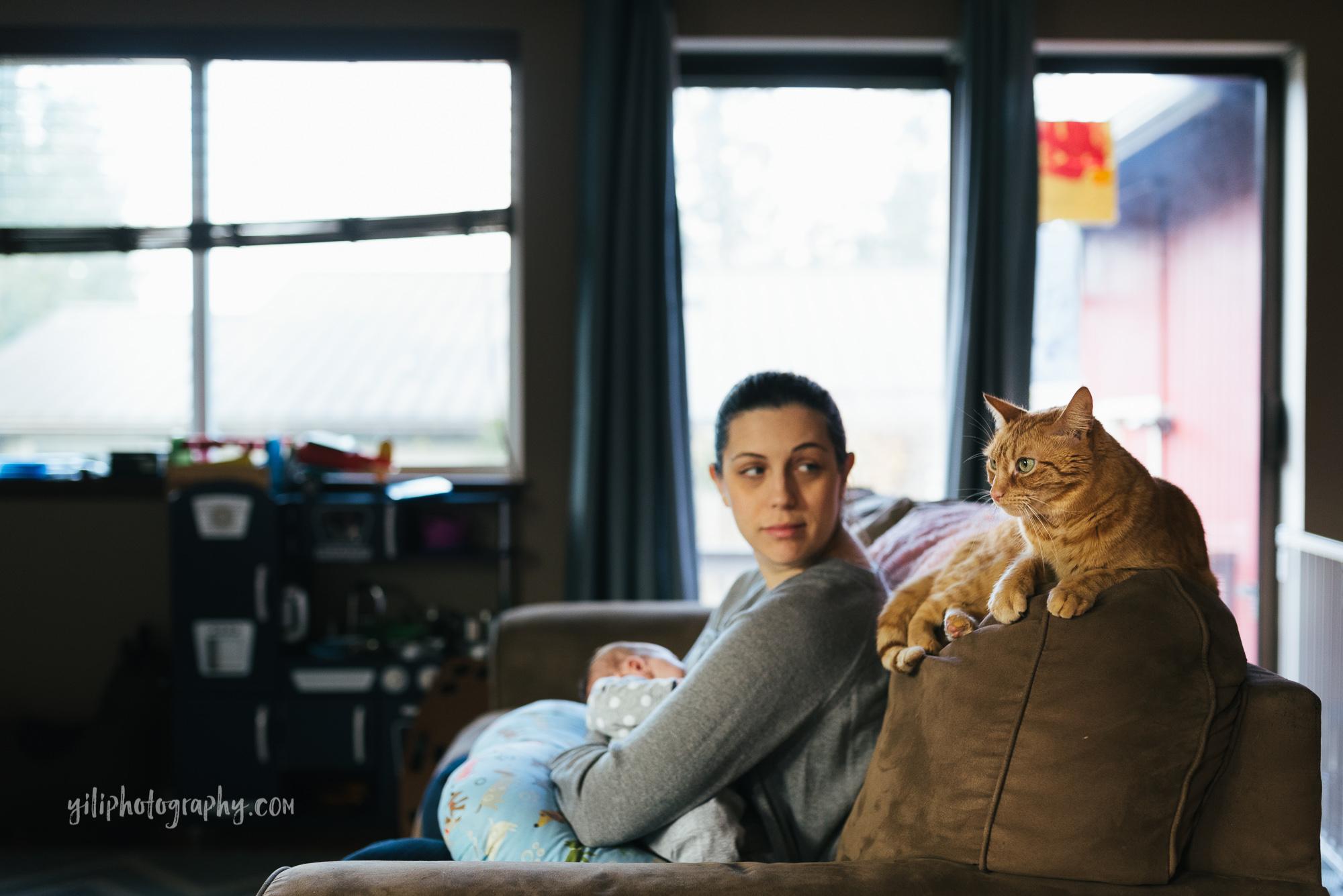 seattle mom nursing looking at orange cat