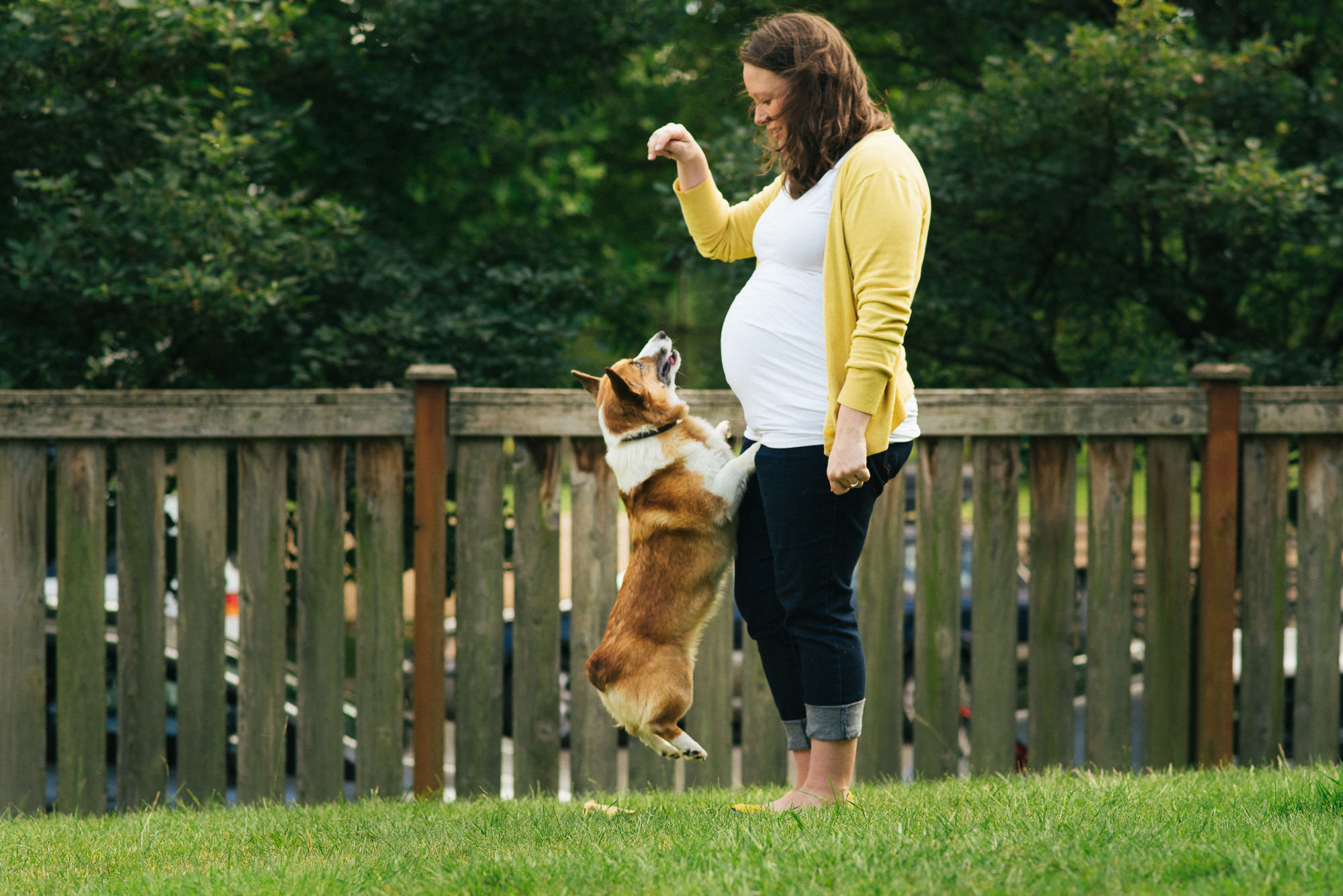 maternity photo of woman with dog doing tricks