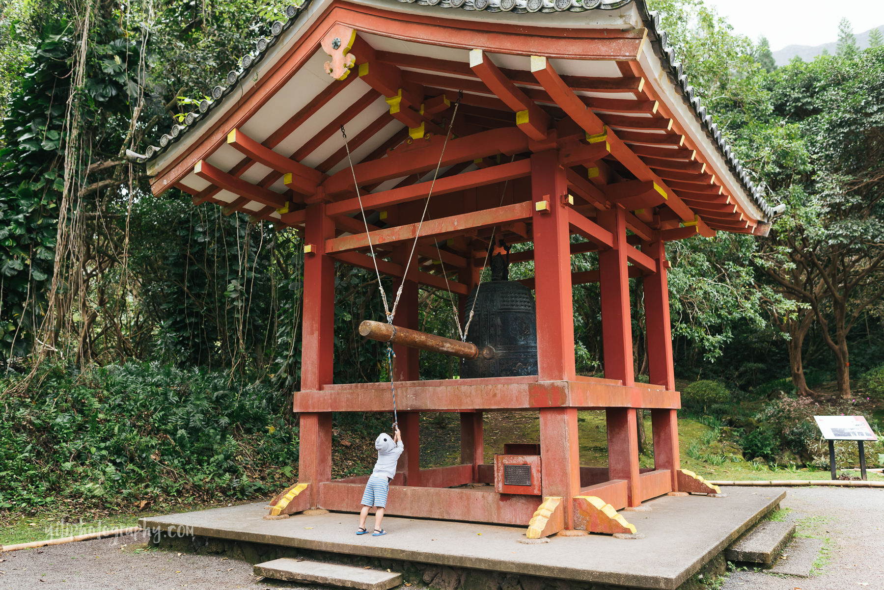 boy ringing buddhist bell at japanese temple