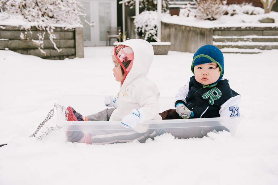 seattle twins photographer, snow sledding