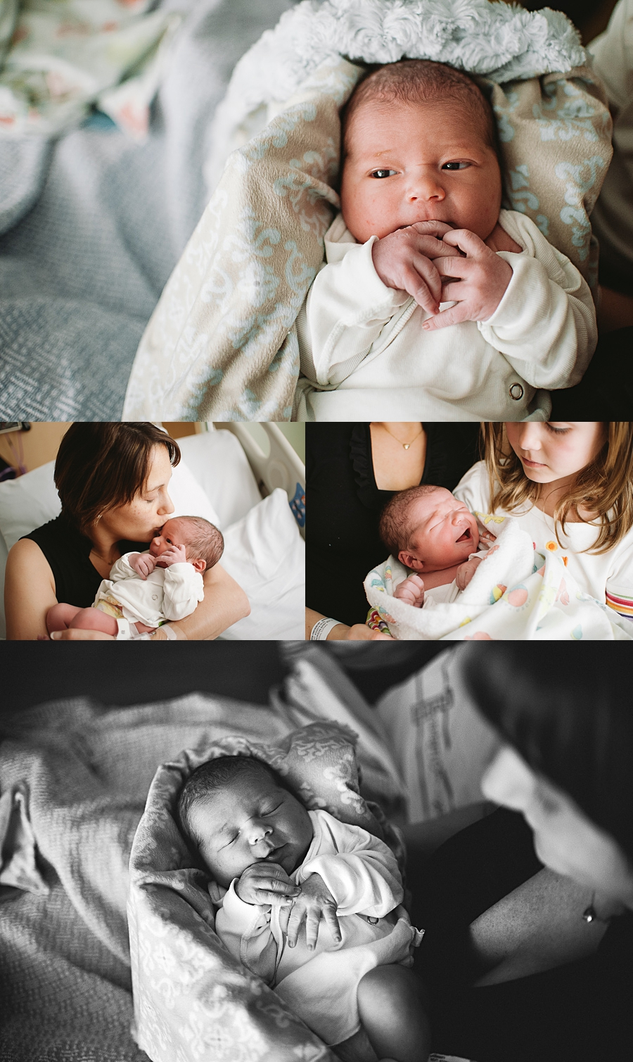seattle newborn portrait photographer