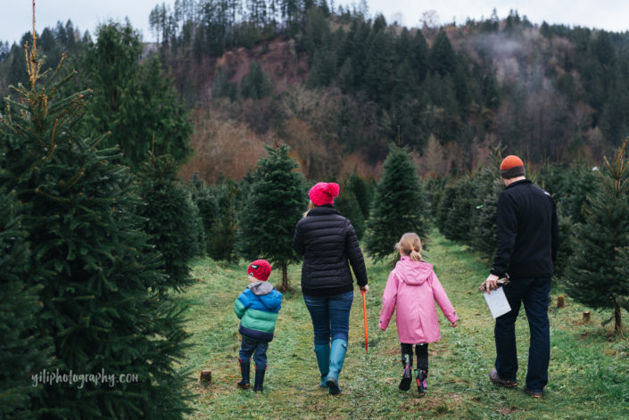 seattle family of four walking through christmas tree farm in carnation WA
