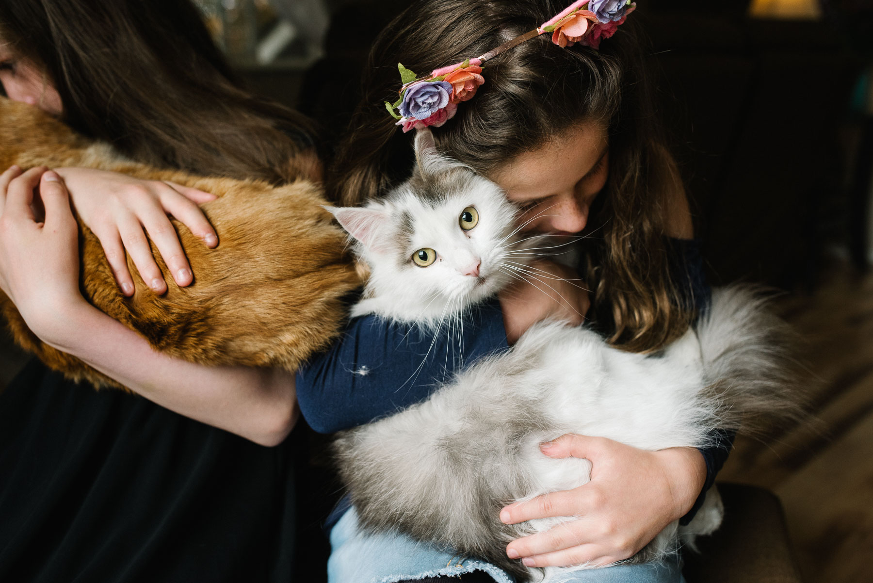 girl hugging white and grey cat