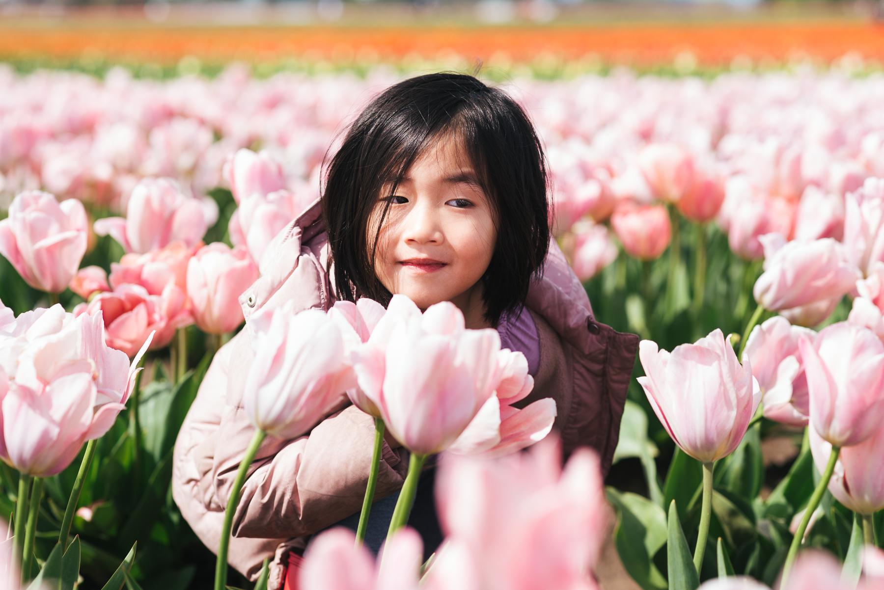 little girl among rows of pink tulips