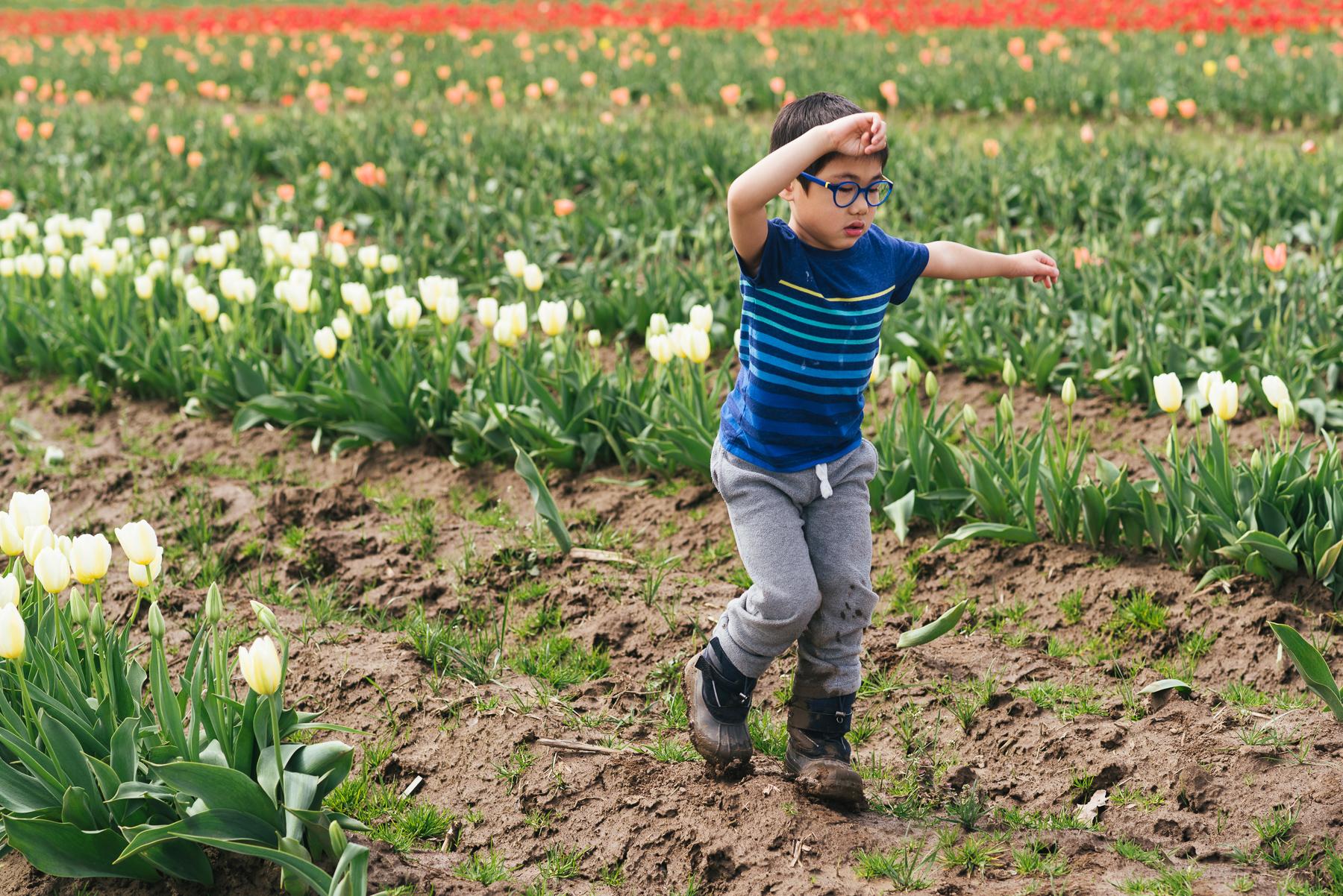 boy running in between rows of tulips