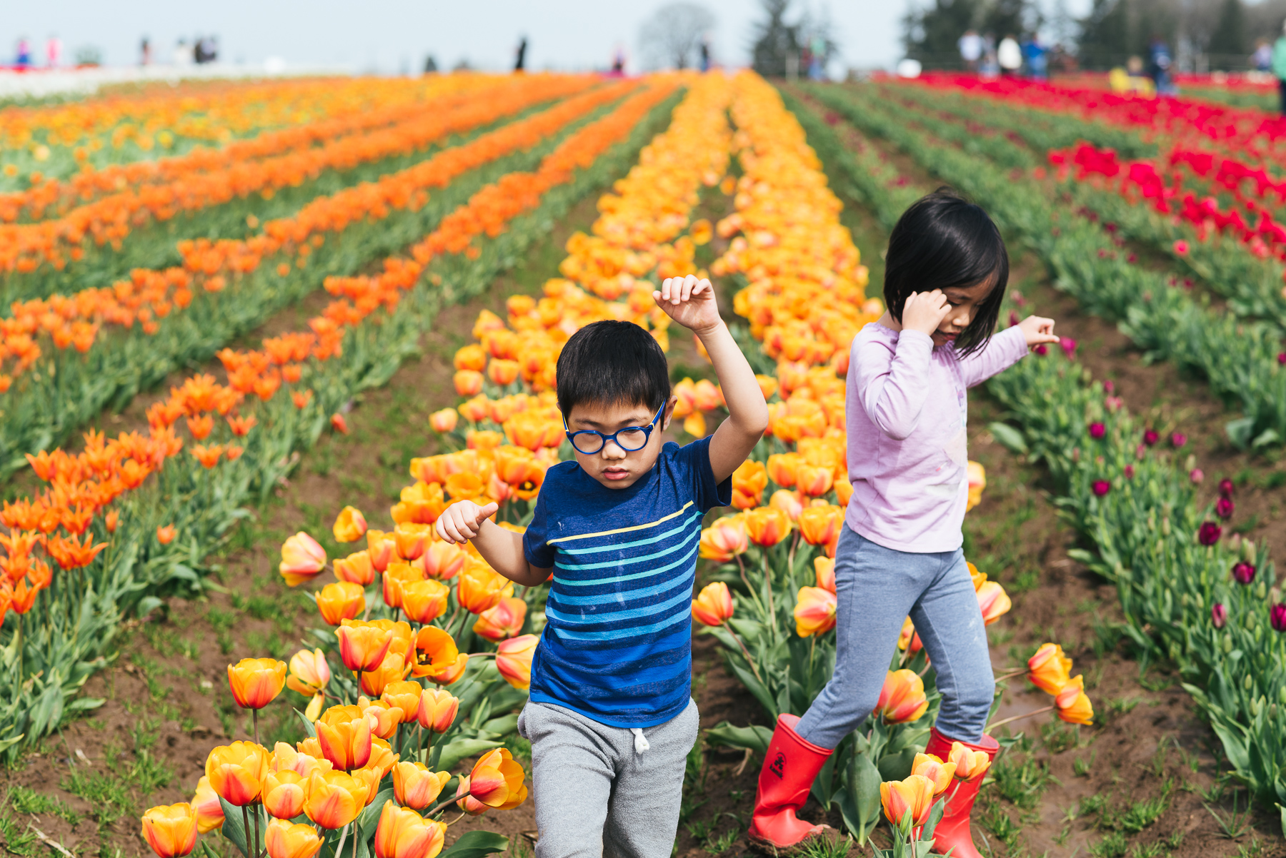 boy girl twins in tulip field