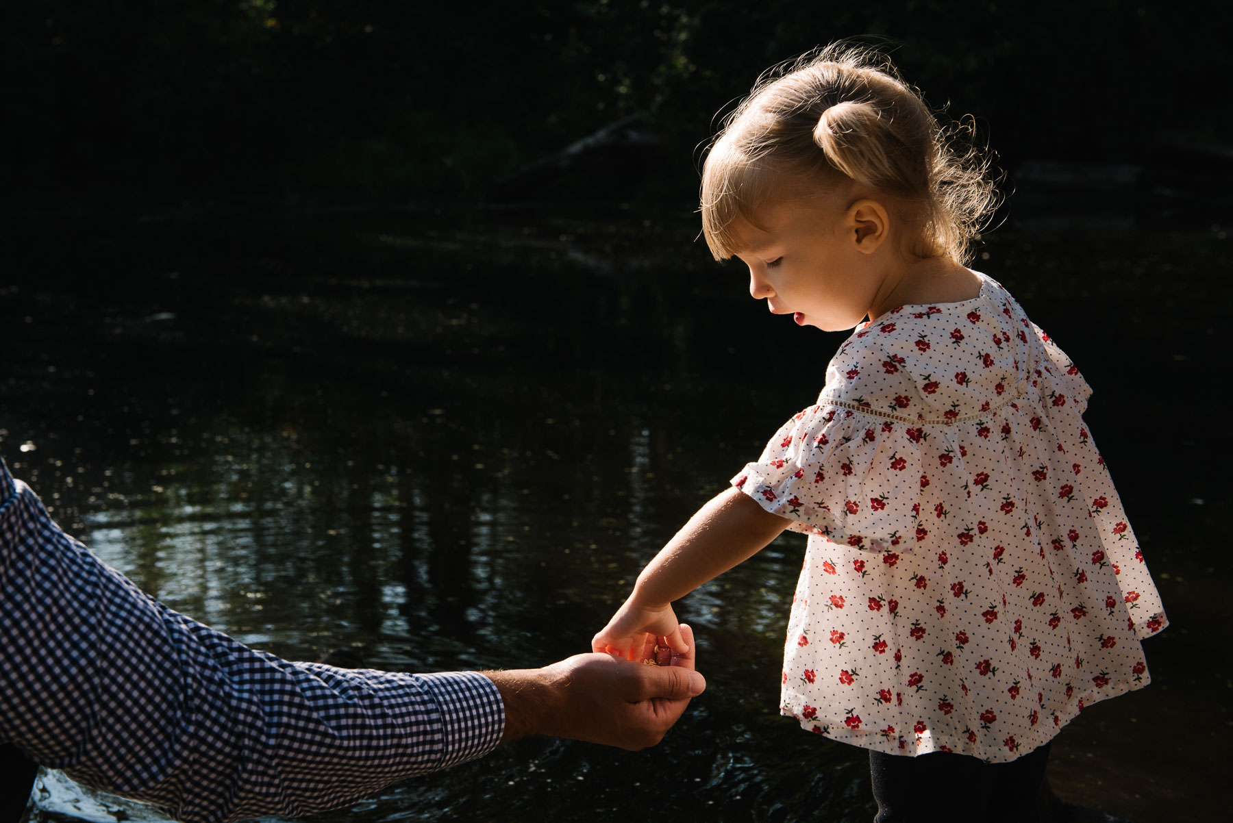 little girl grabbing duck food out of her father's hand